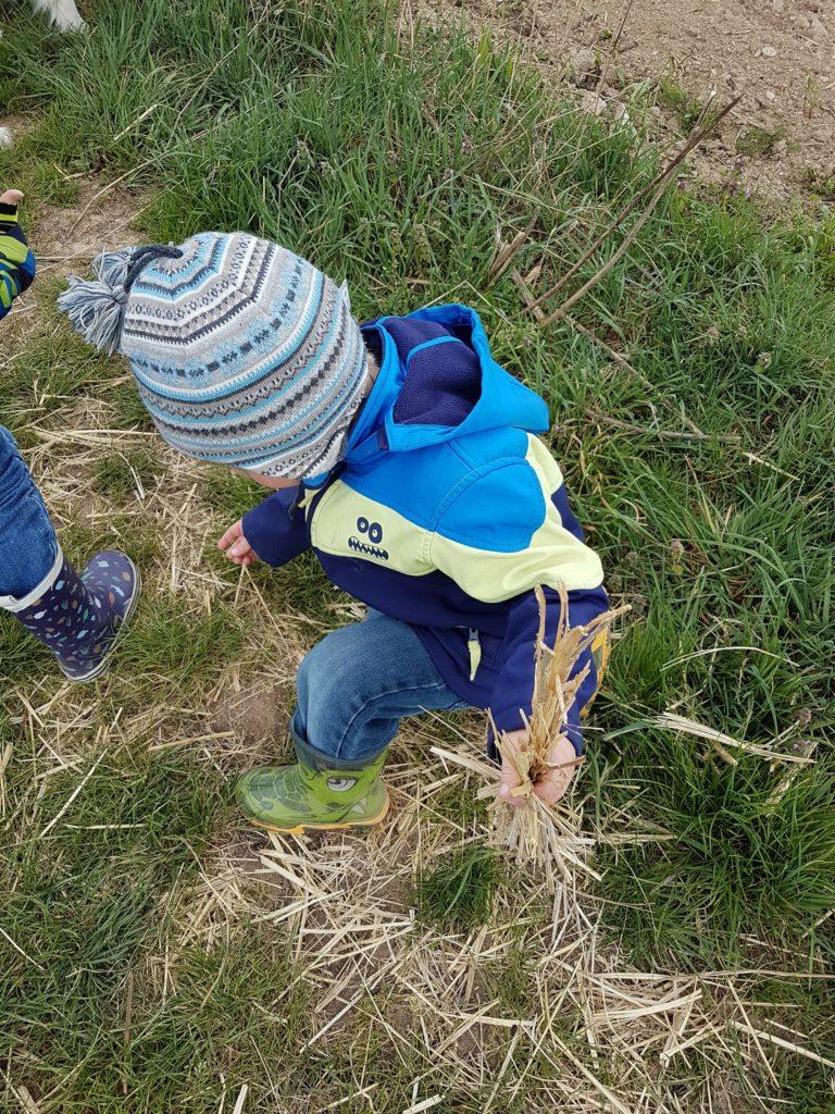 Kind mit Stroh