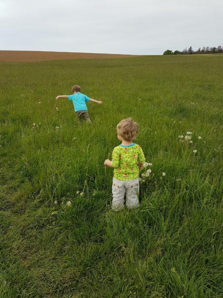 Kinder auf einer Wiese